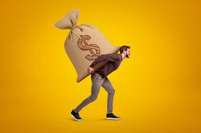 A person carrying a giant bag with a dollar sign on their back.