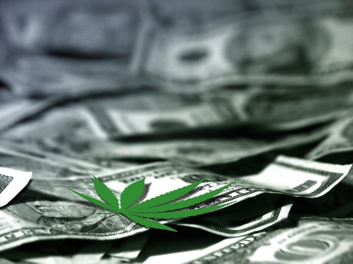 A cannabis leaf lying on American dollar bills.