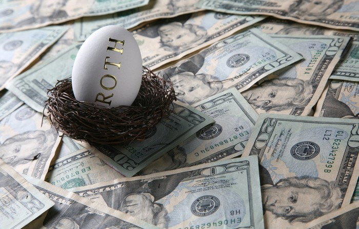 Roth egg sitting in bird nest surrounded by money.