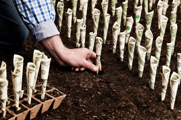 A hand plants dollars in soil to see it grow