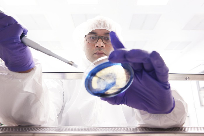 Lab worker at a pharmaceutical company performing a task.