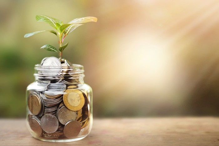 A glass jar full of coins and plant growing through it with some coins and plant leaves.