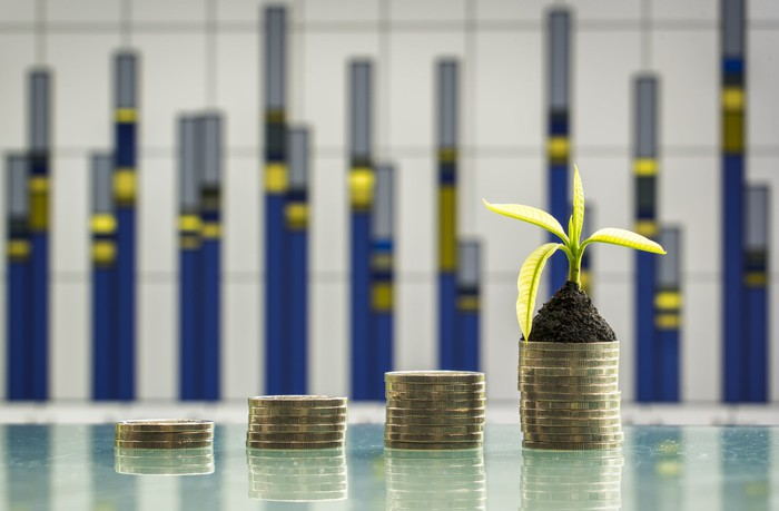 A plant sprouts from stacks of coins.