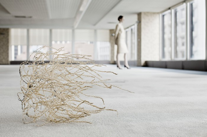 Tumbleweed in an empty office building.