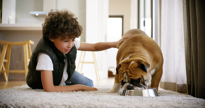 A dog eating from a bowl next to a child.