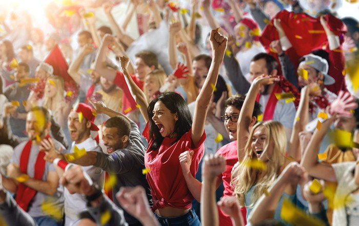 Cheering fans in a crowded stadium.