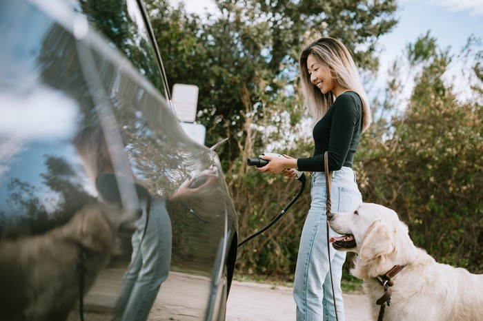 A driver charges an electric car while a dog watches patiently.