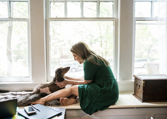 A person pets an attentive dog while both sit on a bench next to windows.