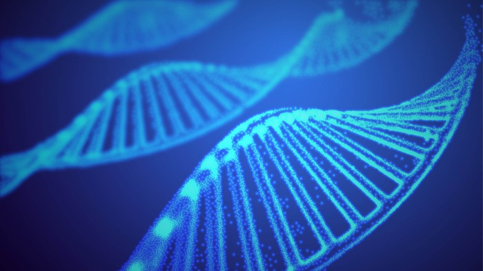 Three strands of DNA.