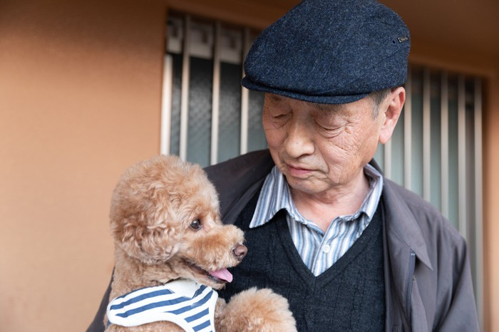 An elderly person holding a poodle breed dog.