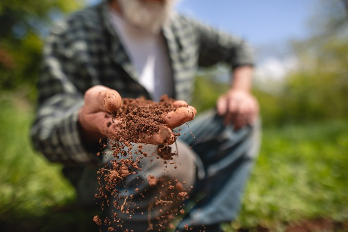 Person sifting a handful of dirt.