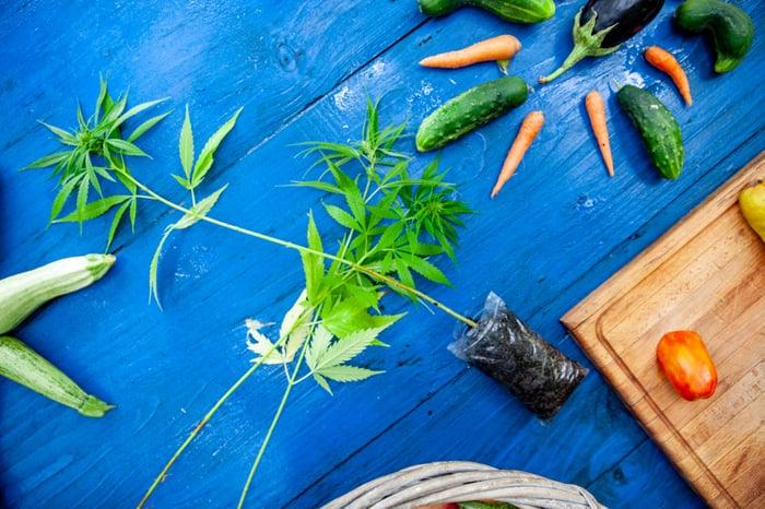 Marijuana plant with vegetables.