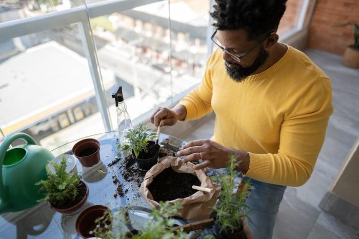 Gardener at home.