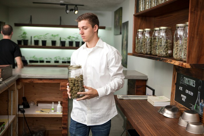 Person holding jar of cannabis flower.