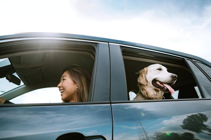 Une personne sur le siège conducteur d'une voiture et un chien regardant par la vitre arrière.