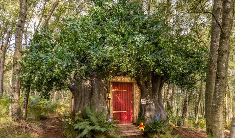 02_Winnie-the-Pooh-House-2-Airbnb-CREDIT-Henry-Woide