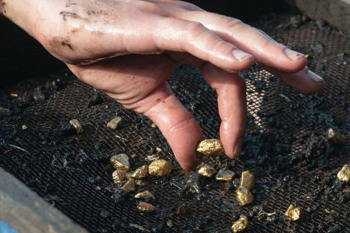 A hand picks up gold nuggets from the dirt in a sifting basket.