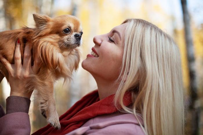 Personne heureuse avec un animal de compagnie chihuahua en promenade d'automne.