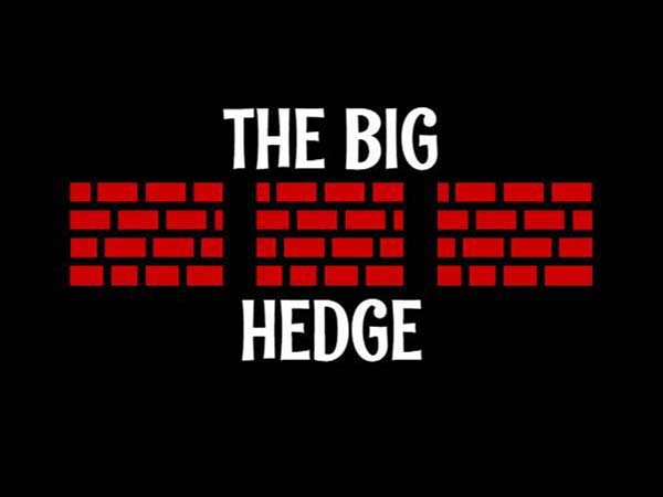 The Big Hedge logo